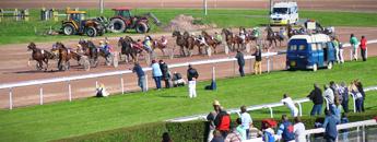 Courses trot Hippodrome Lisieux pays auge Calvados Normandie