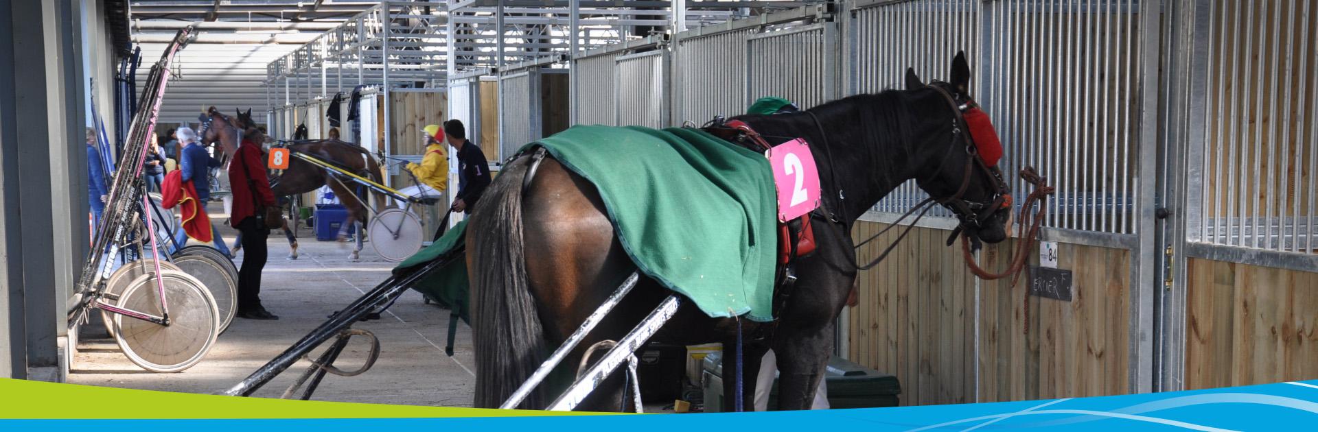 Hippodrome Lisieux boxes chevaux equitation normandie pays auge